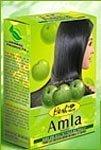 Hesh Amla